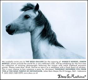 Deus_HorsesHorses_NewInvit_web